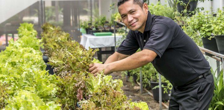organic-garden-model-sarawut-2
