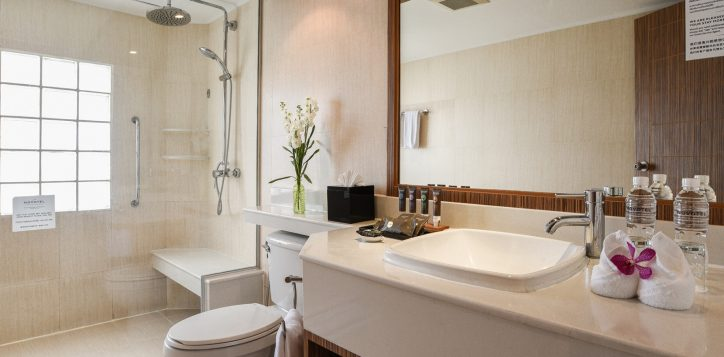 suite-bathroom-2-2